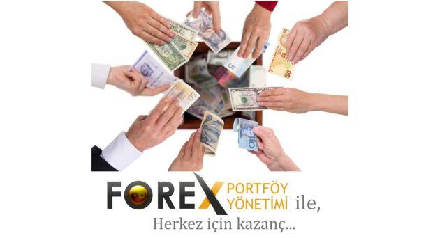 Forex-yatırım-portföy-yönetimi